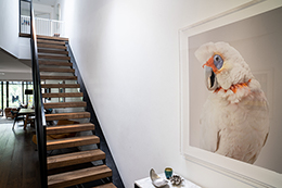 Staircase Design Upgrade Paddington, Sydney, NSW 2021